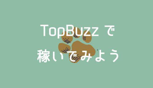 バズビデオ/TopBuzzの基本的な稼ぎ方&効率良く稼ぐコツ【2020年版】
